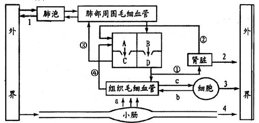 电路 电路图 电子 原理图 509_241