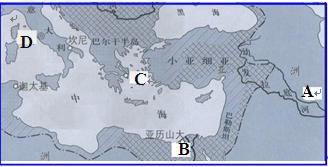 下列在历史上曾地跨欧亚非三大洲的帝国有 ①