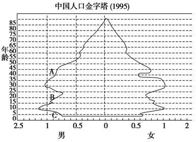 人口金字塔_人口增长金字塔图