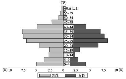人口结构_深圳市人口结构