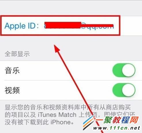 大家介绍在苹果手机中查看自己手机的apple