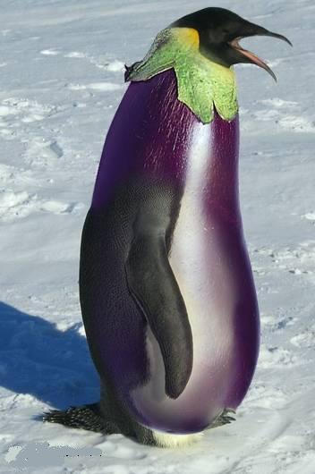 ps高手打造蔬菜水果与动物的完美结合