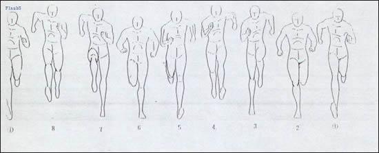 跑步动画步骤图