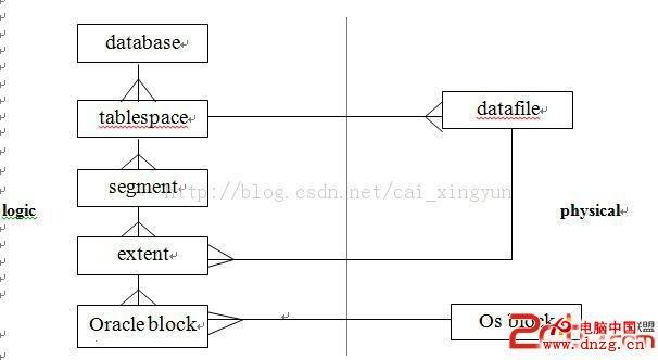 oracle数据库学习之逻辑结构