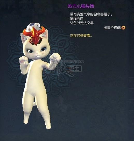 剑灵时装—热力小猫头饰