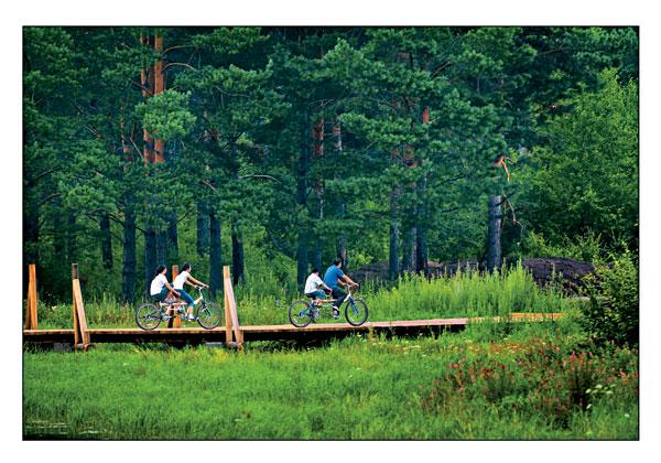 夏日来界江森林游是人们选择避暑的理想方式