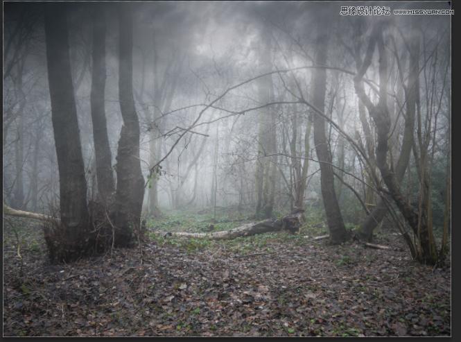 photoshop合成恐怖效果的森林人像场景