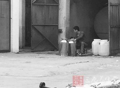 郑州一牧场挤奶室里堆满视频疗法卖奶无v牧场大牧场牛粪灸图片