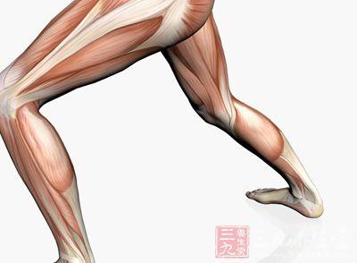 腿部肌肉锻炼 男性如何练习腿部肌肉
