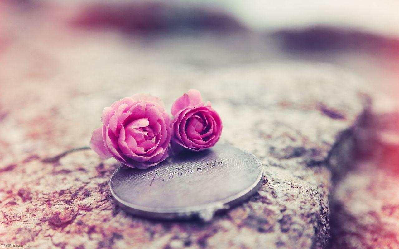 恋爱_恋爱通过了考验就是白头偕老,反之就是陌路