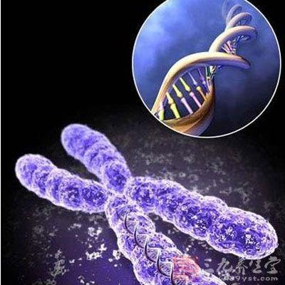 人们把大肠杆菌(一般内含g基因)能