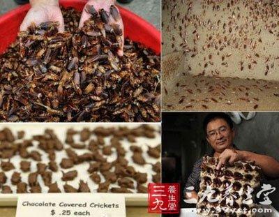 所爆出得蟑螂是护肤品的成分也不是不可能的.   浙江大学昆