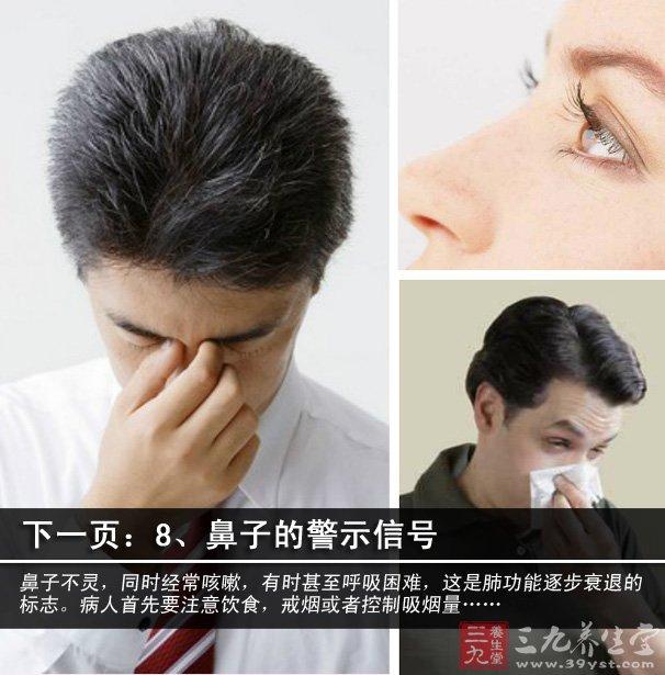 鼻子内部结构图病变
